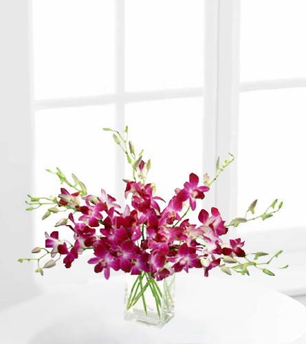 Drenched in Dendrobium Orchid Bouquet
