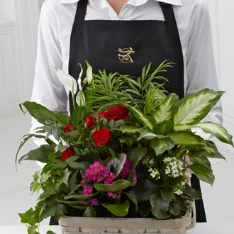 FTD's Florist Designed Blooming Plants